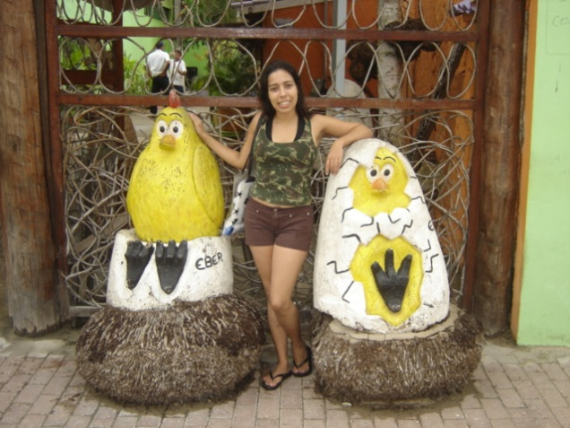 030-van-e-esculturas-de-galinhas