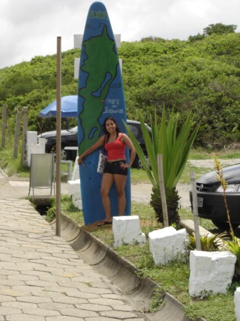 041-van-prancha-praia-da-joaquina