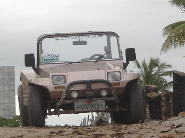 088-buggy
