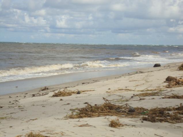 157-2o-dia-litoral-norte-ilha-da-croa