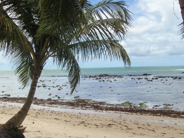223-3o-dia-litoral-norte-praia-de-riacho-doce