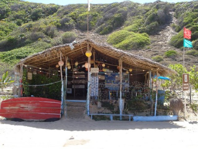 336-2o-dia-litoral-sul-santuario-das-tartarugas-marinhas-de-baia-formosa