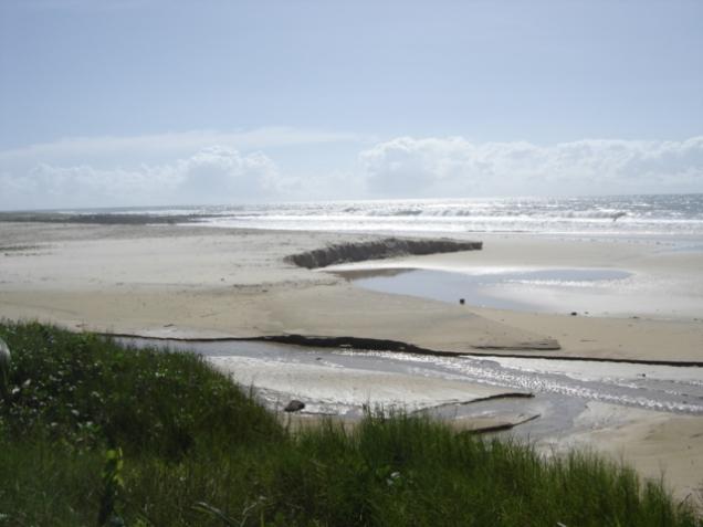 481-3o-dia-litoral-sul-praia-de-buzios