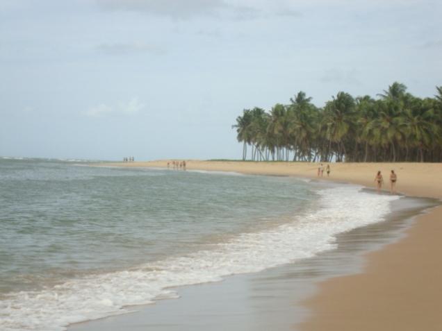518-5o-dia-praia-do-gunga