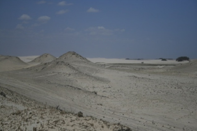 0413-3o-dia-dunas-petrificadas