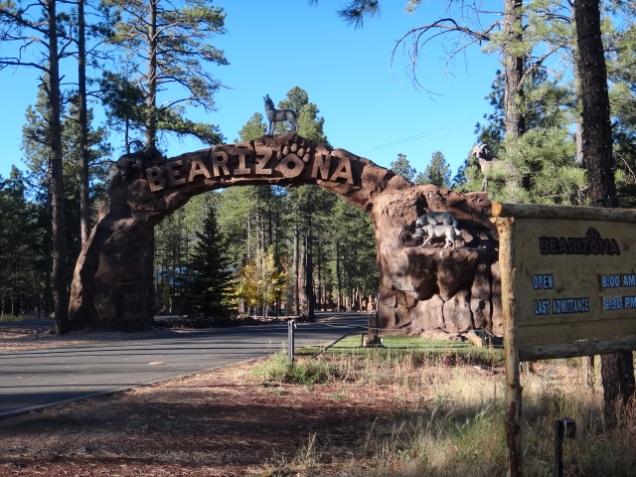 1924 8 dia Arizona Bearizona entrada