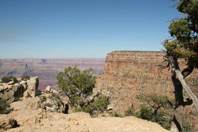 2039 8 dia Arizona Grand Canyon Grandview Point