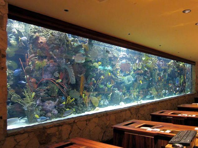 800px-Mirage_Aquarium_(8226785671)