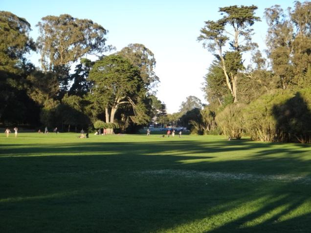 3349 11 dia San Francisco Gonden Gate Park