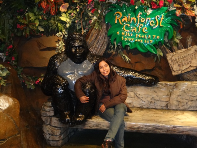 3435 11 dia San Francisco - Rainforest Café