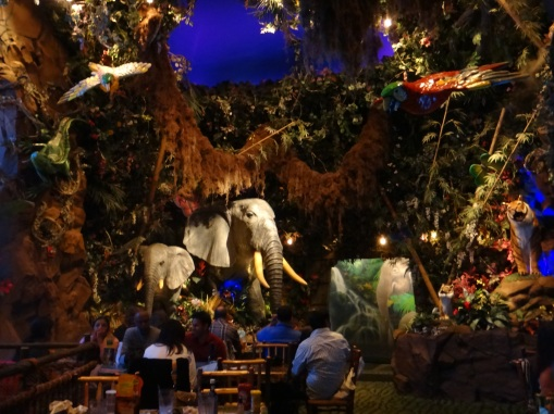 3443 11 dia San Francisco - Rainforest Café