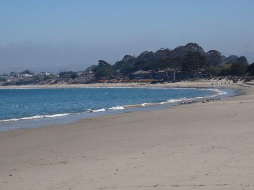 3673 Monterey - Old Fishermans Wharf