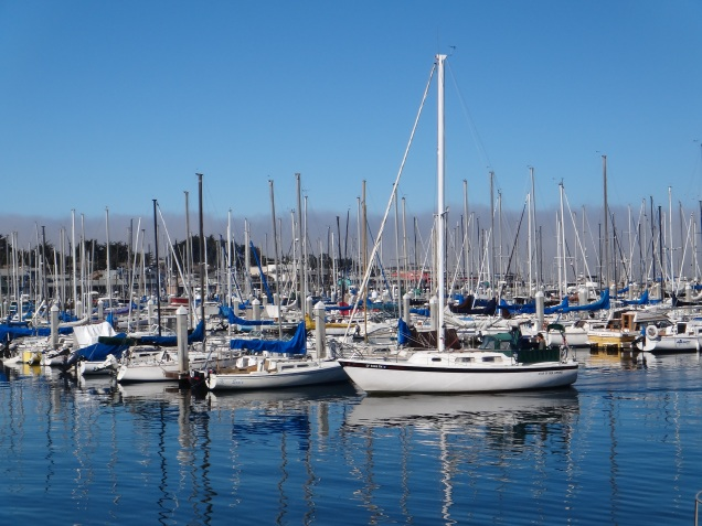 3677 Monterey - Old Fishermans Wharf