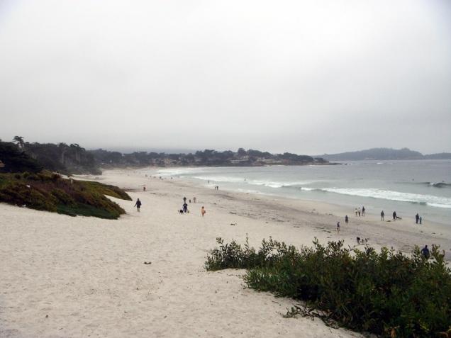 3734 13 dia - Carmel River State Beach