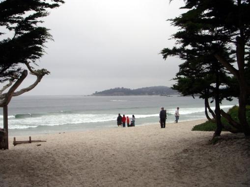 3737 13 dia - Carmel River State Beach