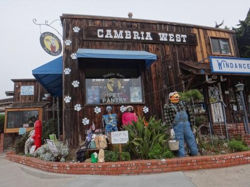3888 14 dia - Cambria Scarecrow Festival