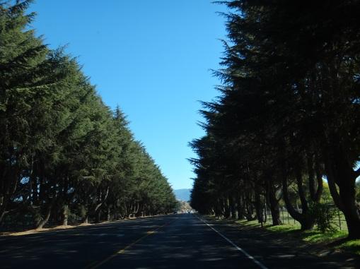 3938 14 dia - Condado de Santa Bárbara - Solvang