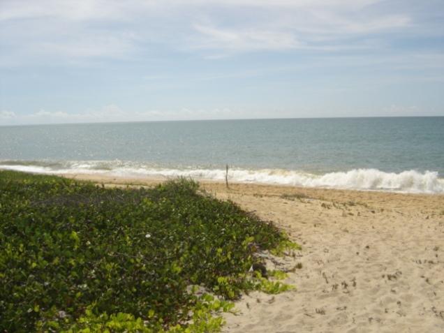 0487-3o-dia-praia-de-mutari-santa-cruz-de-cabralia
